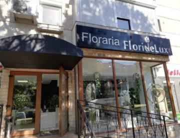 Incinta frigorifica floraria Flori de Lux Constanta 18